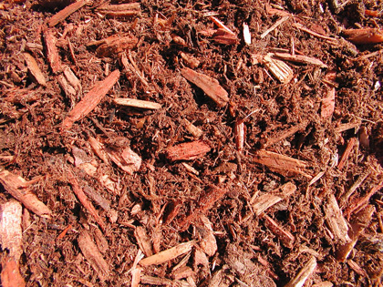 A sample of deluxe hemlock mix bark mulch.