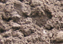 A sample of our screened topsoil.